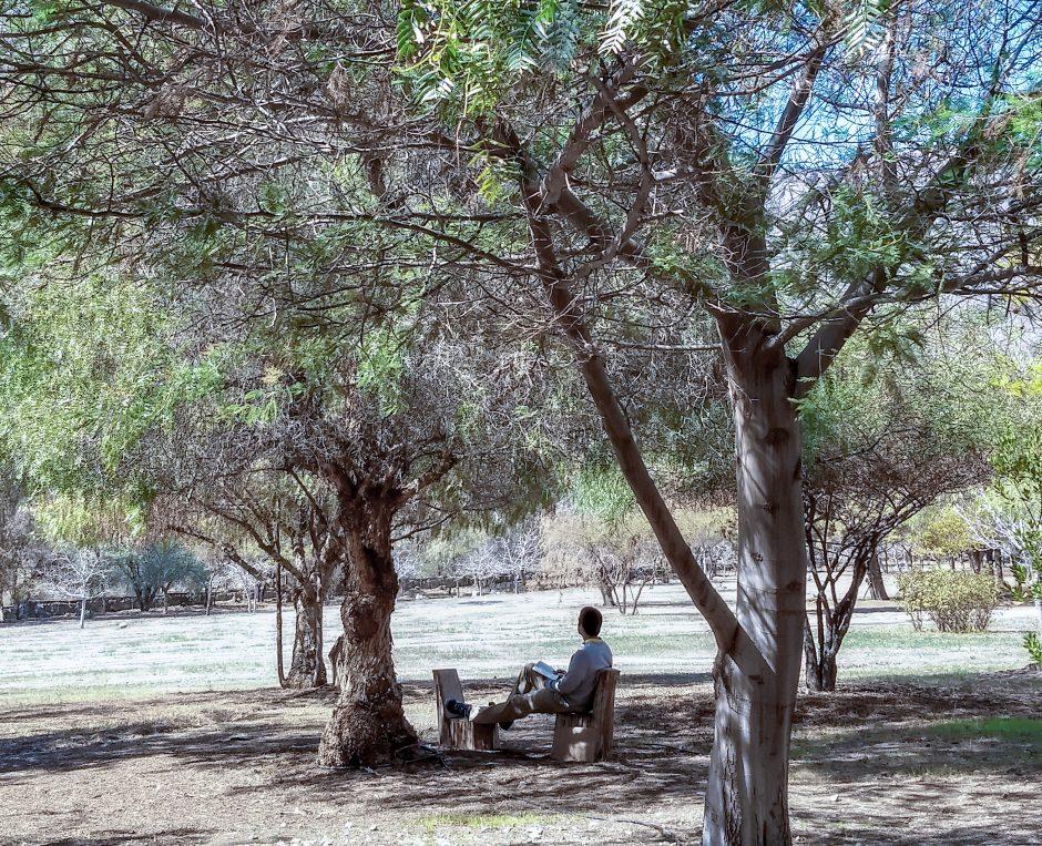 Ejercicios Espirituales en Chile - Sodalicio de Vida Cristiana (3)