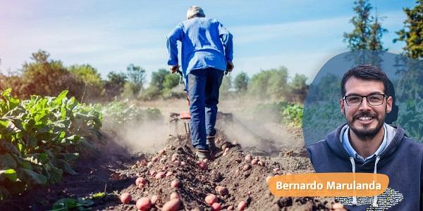 10 reglas para la vida… frutos de la cosecha